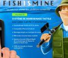 fish-010415