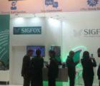 Sifox-041115