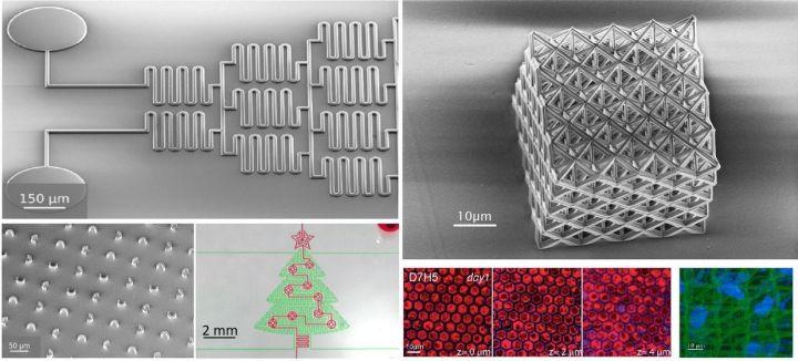 Concentration grenobloise en micro-impression 2D et 3D