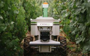 Robots agricoles : Naïo Technologies lève 14 millions d'euros