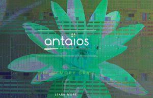 Antaios, pionnier de la mémoire SOT-MRAM, lève 11 millions de dollars